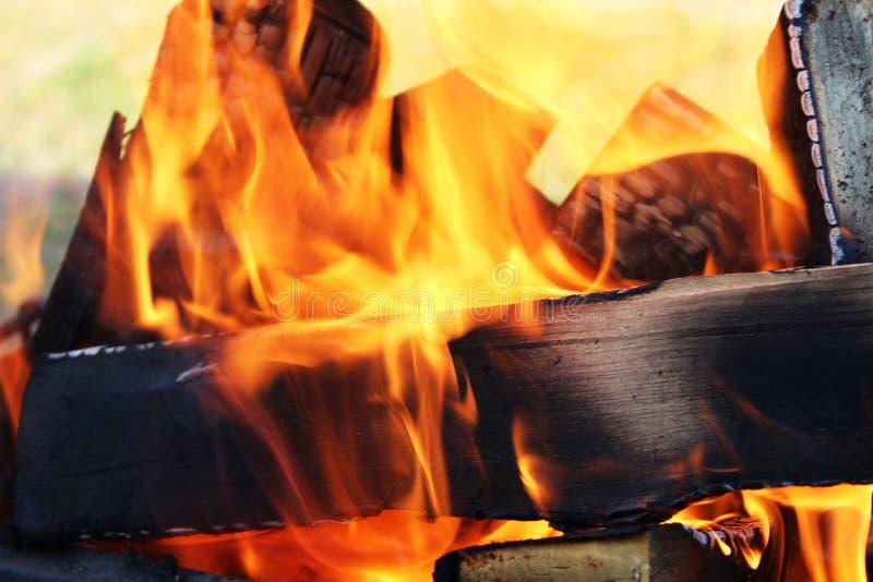 Le feu dans le gril du bois de bouleau photos libres de droits