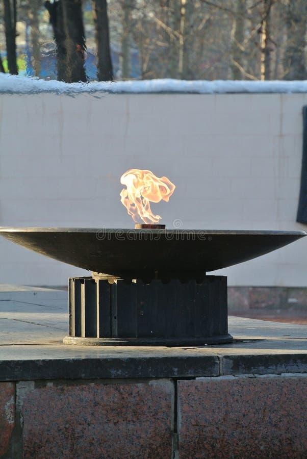 le feu dans la cuvette photo libre de droits