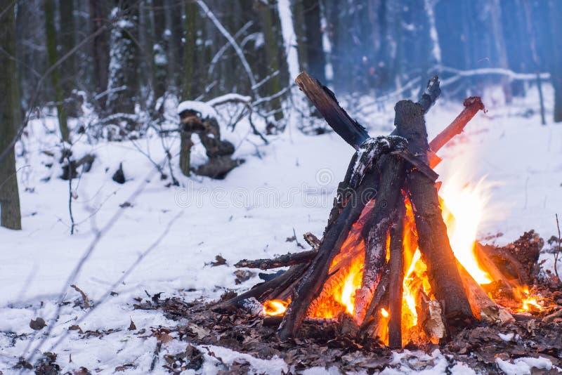 Le feu dans la forêt d'hiver images libres de droits
