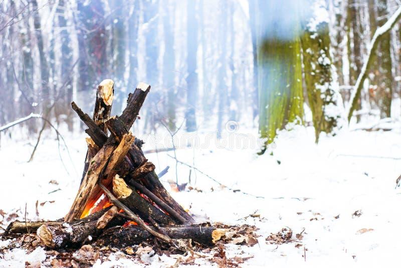 Le feu dans la forêt d'hiver photographie stock libre de droits