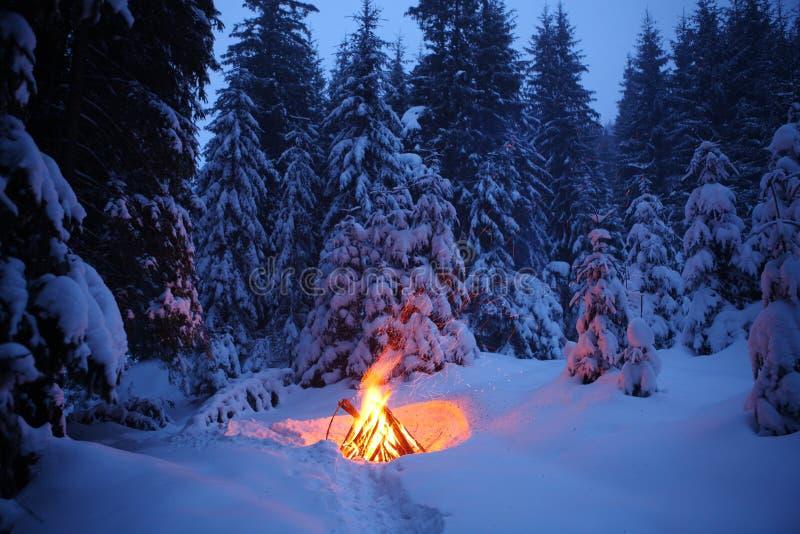 Le feu dans la forêt d'hiver illumine la neige images stock