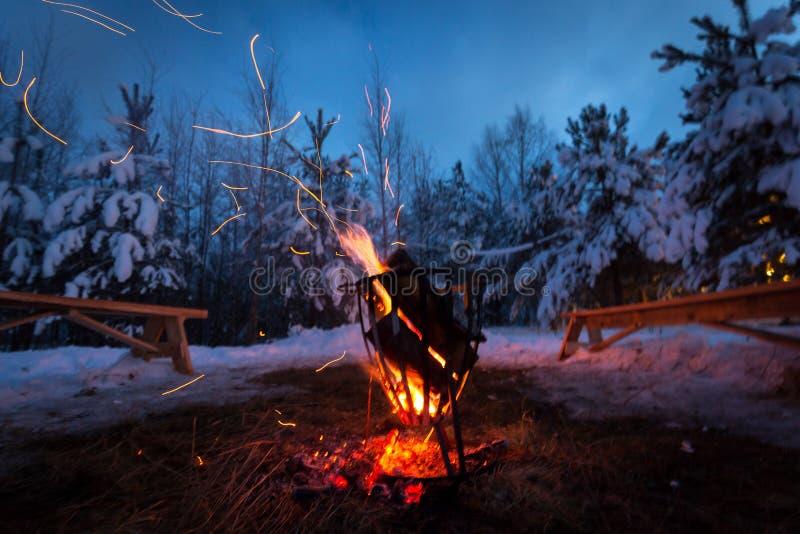 Le feu dans la forêt d'hiver illumine la neige image stock