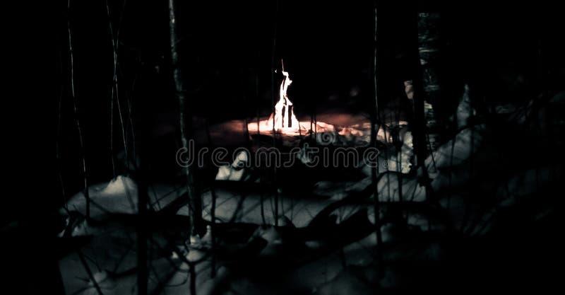 Le feu dans la forêt d'hiver la nuit photos stock