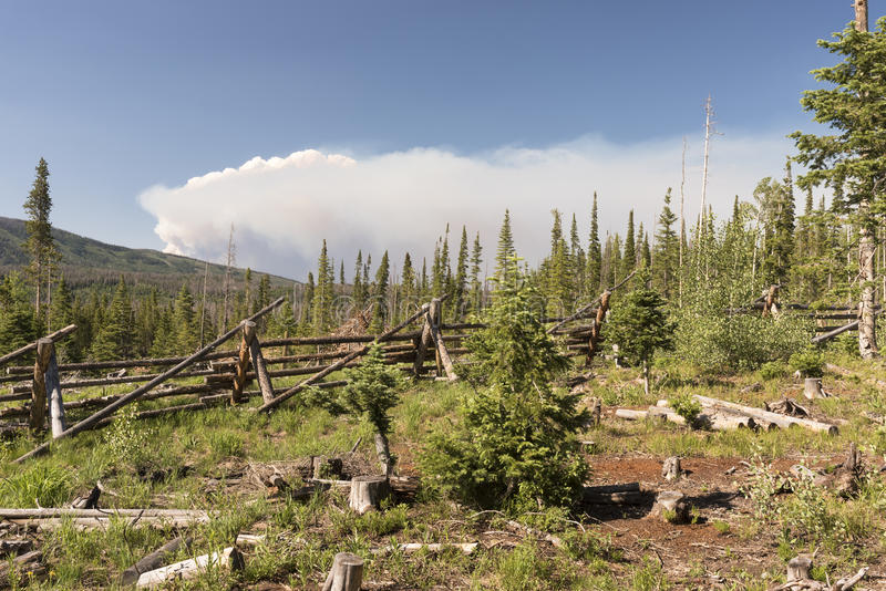 Le feu de Beaver Creek dans le Colorado central du nord photos libres de droits