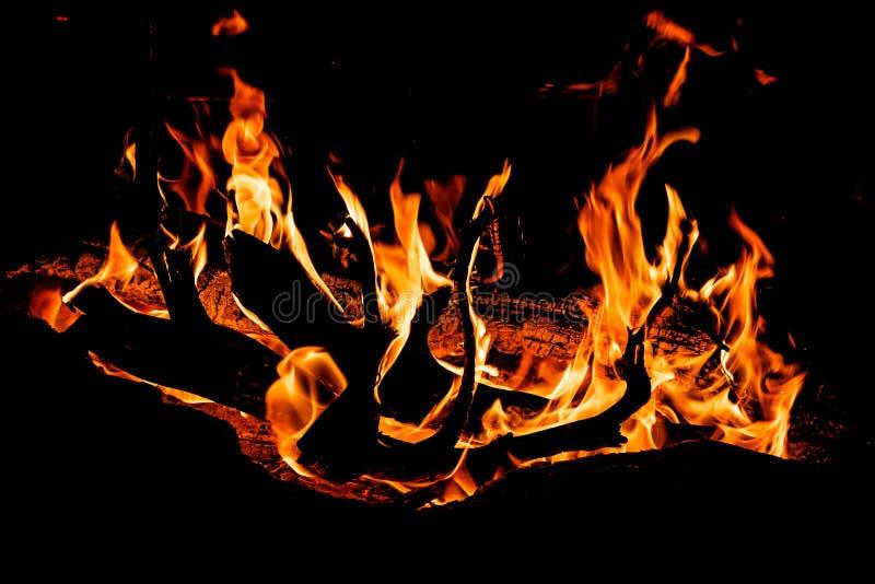 le feu de camp avec la flamme réprimande le burning la nuit sur le fond noir image libre de droits