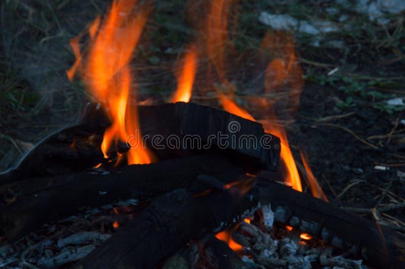 Le feu de camp le soir d'été photographie stock libre de droits