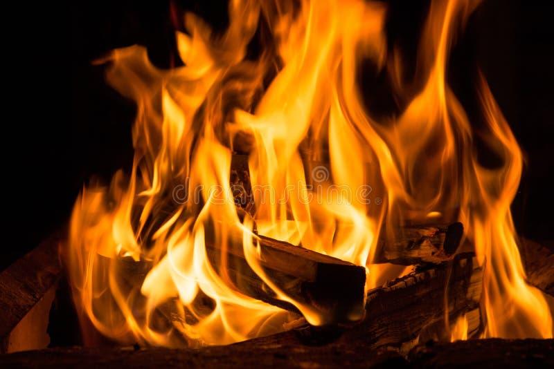 Le feu de camp pendant la nuit image libre de droits