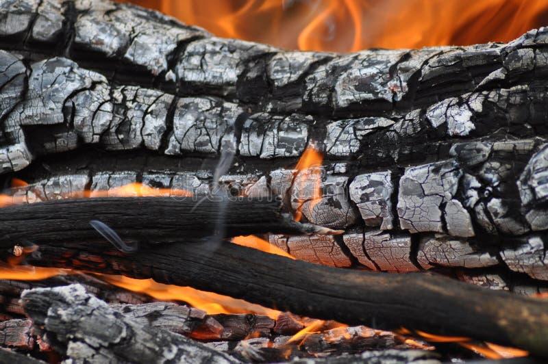 Le feu de camp Vers le haut-Se ferment   photos libres de droits