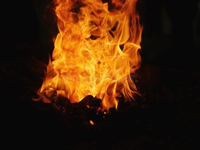 Le feu de charbon photo stock