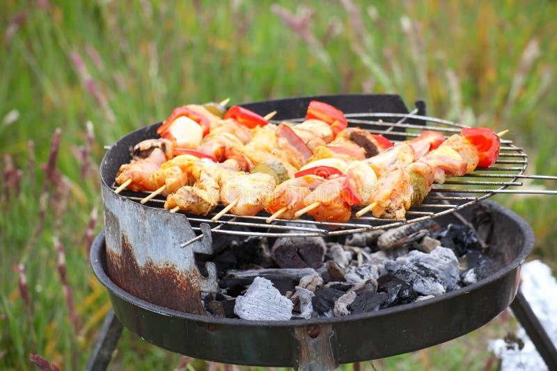 Le feu de feu de camp de feu flambe grillant le bifteck sur le BBQ image libre de droits