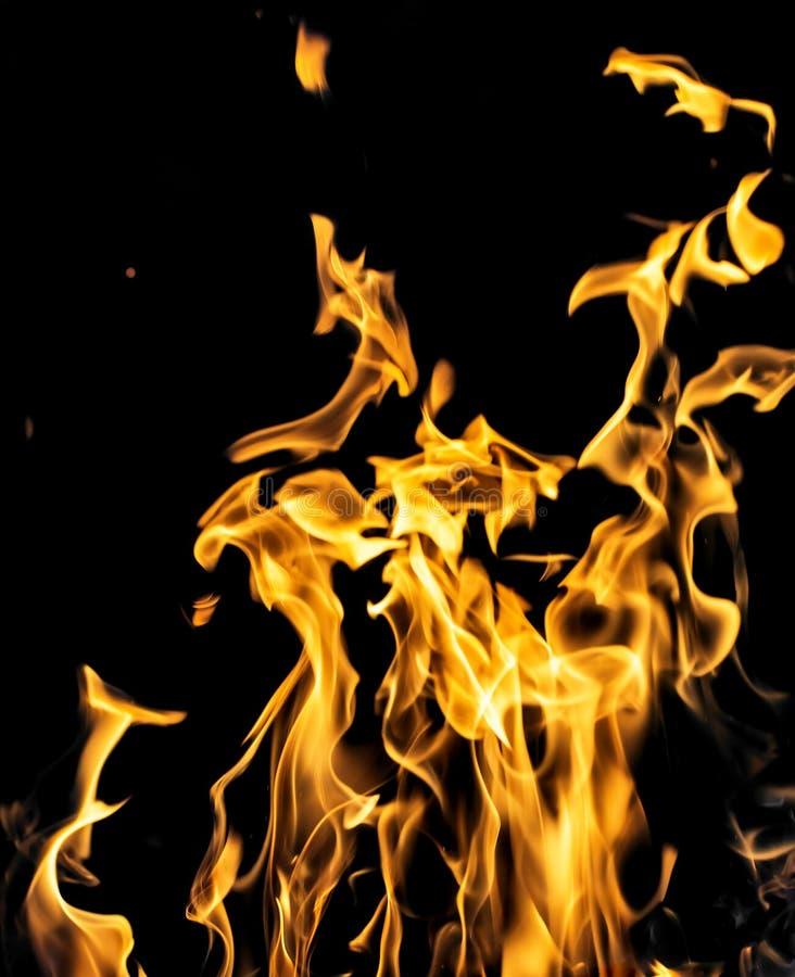 Le feu de flamme sur le fond noir image libre de droits