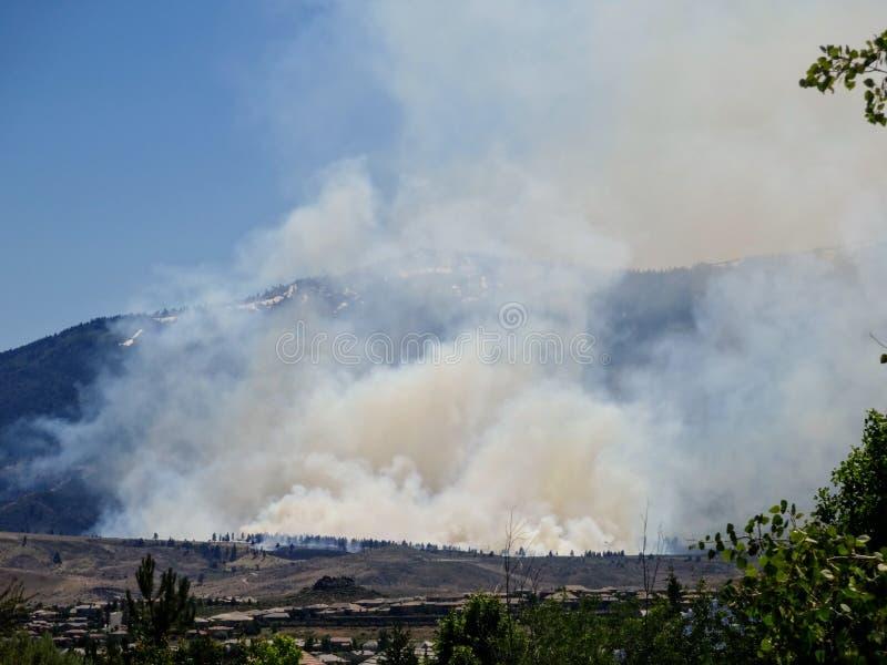 Le feu de forêt et fumée image libre de droits