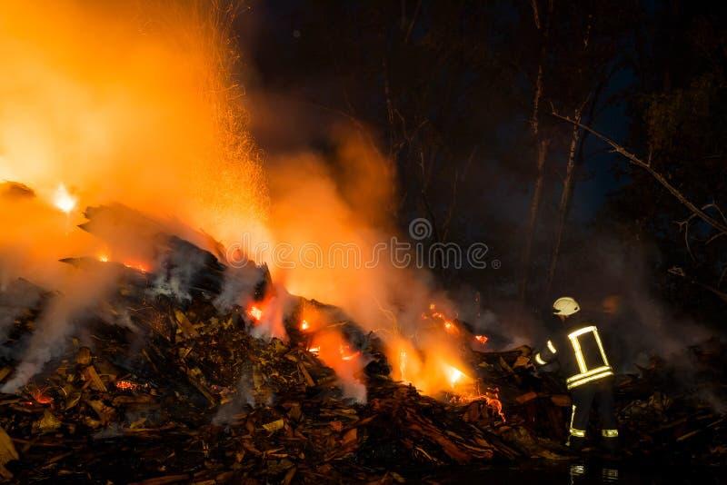 Le feu de nuit dans la forêt images libres de droits