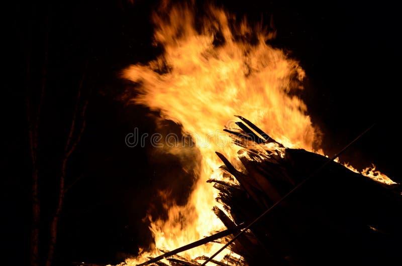 Le feu en bois massif image libre de droits