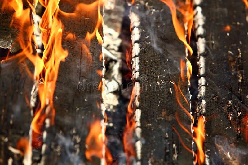Le feu est un phénomène de la nature qui transforme tous les matériaux inflammables en énergie thermique et lumière images libres de droits