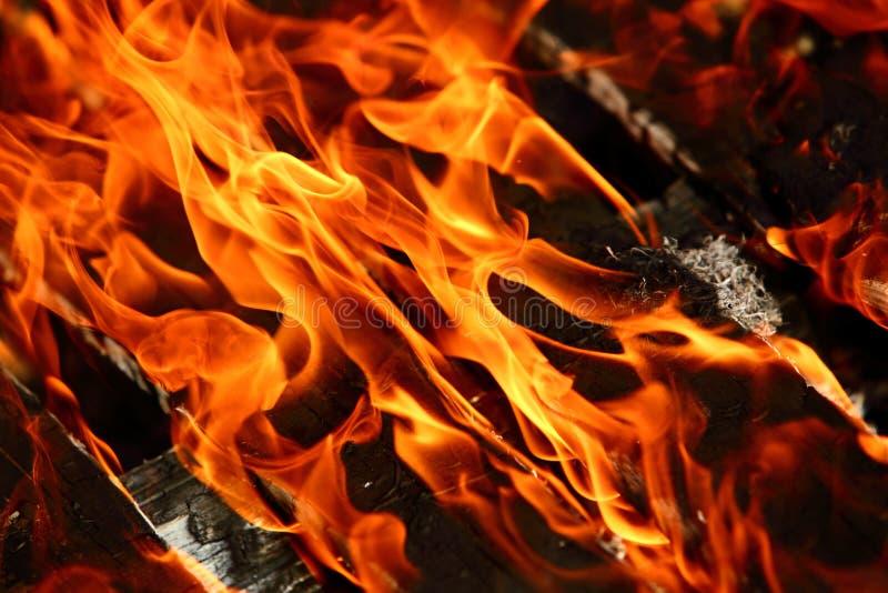 Le feu est un phénomène de la nature qui transforme tous les matériaux inflammables en énergie thermique et lumière image libre de droits