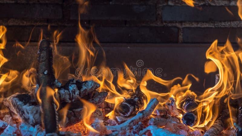 Le feu a fait avec du bois à partir d'un arbre pour préparer un barbecue photographie stock