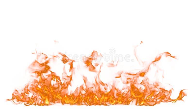 Le feu sur le fond blanc photographie stock libre de droits