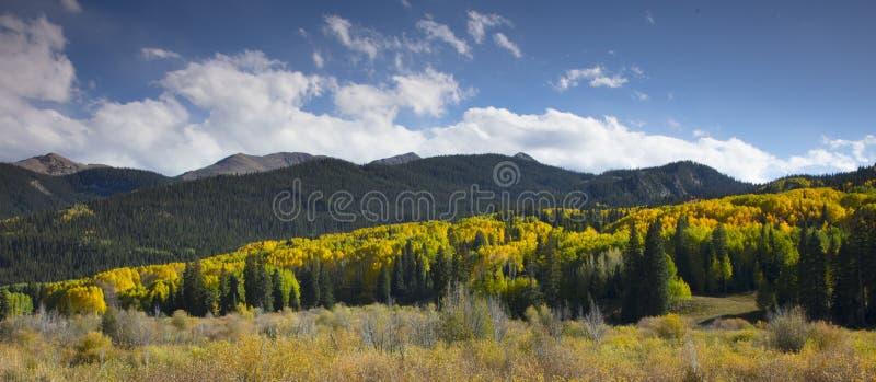 Le feuillage coloré d'Autumn Fall dans le passage de Kebler Crested la butte le Colorado Amérique image libre de droits