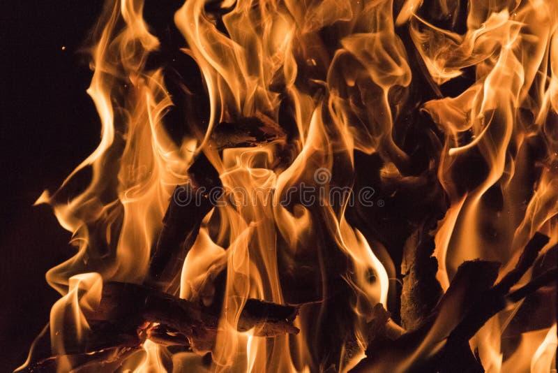 Le fiamme del fuoco si chiudono sulla foto Bei phenomen naturali del pericolo fotografia stock