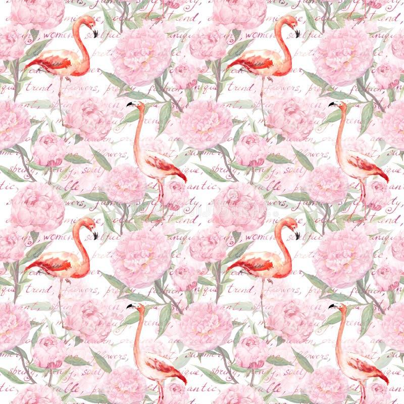Le flamant rose, pivoine fleurit, texte écrit de main Configuration sans joint watercolor photo stock