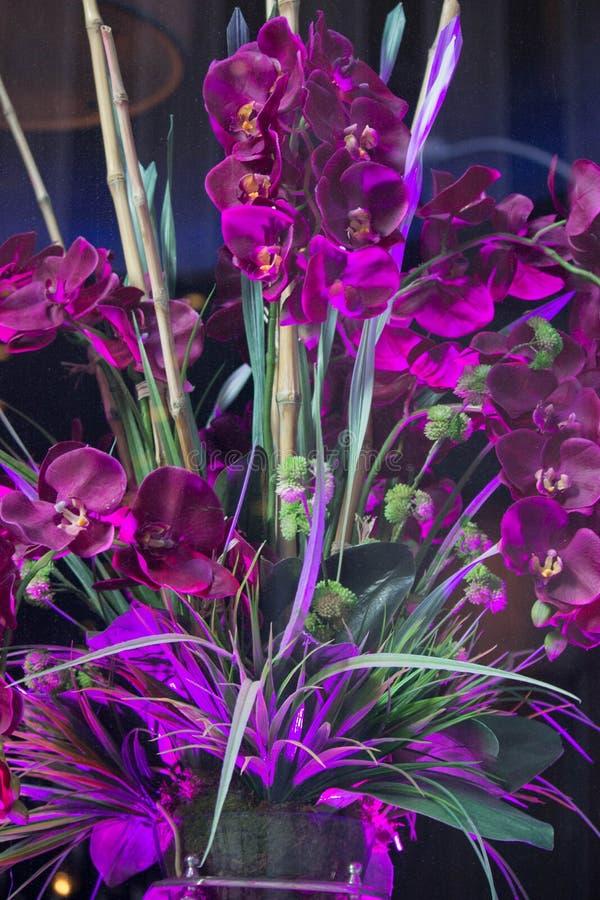 Le fleuriste photos libres de droits