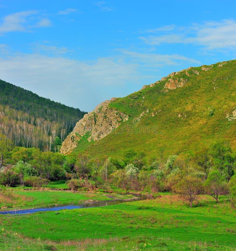 Le fleuve dans le district de montagne. images libres de droits