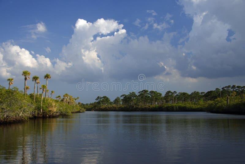 Le fleuve de Loxahatchee images stock