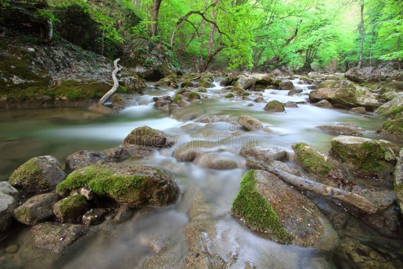 Le fleuve de montagne au printemps avec de l'eau obscur photo stock