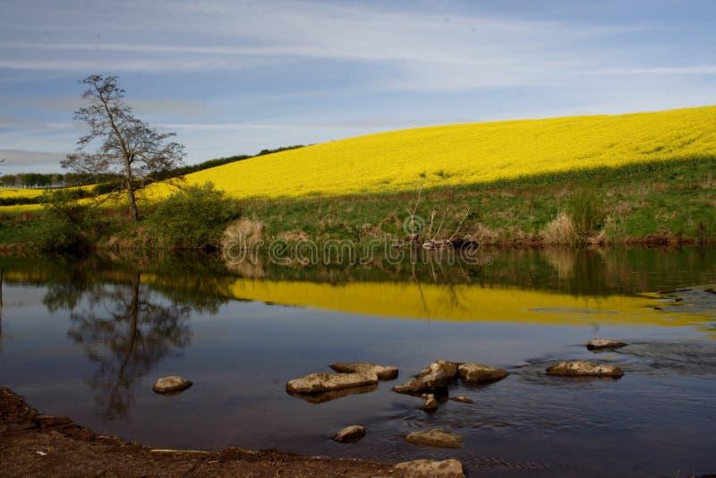 Le fleuve labourent images libres de droits