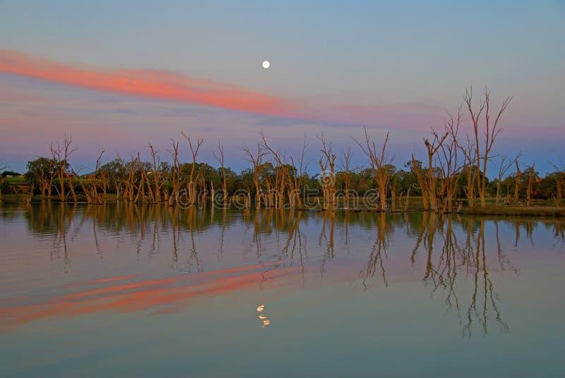 Le fleuve Murray photo libre de droits