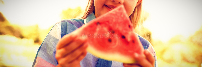 Le flickan som ser vattenmelonskivan i parkera fotografering för bildbyråer