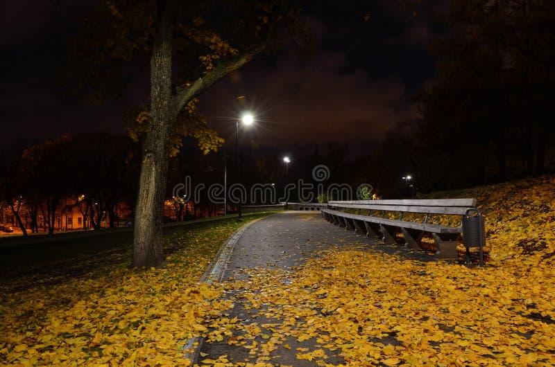 Le foglie cadute autunno si trovano sul percorso in un parco della città immagine stock