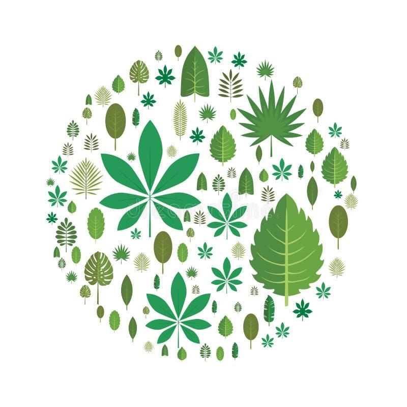 Le foglie degli alberi differenti hanno sistemato sotto forma di un cerchio Progetti l'elemento, illustrazione di vettore, isolat royalty illustrazione gratis