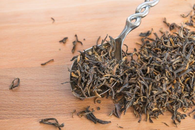 Le foglie di tè nere hanno sparso sul cucchiaio di legno del metallo e della tavola Ingr fotografie stock