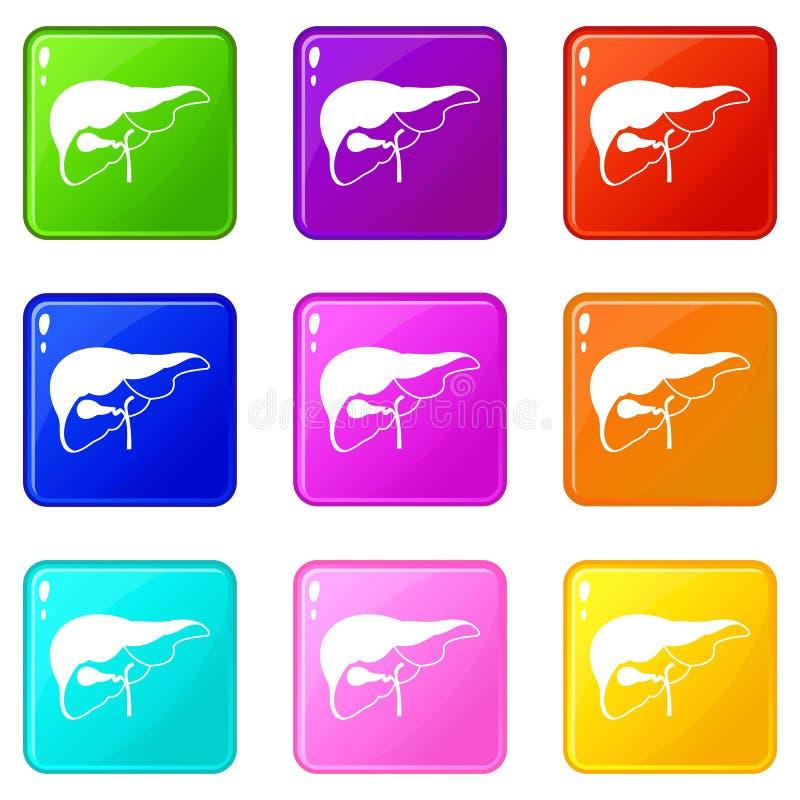 Le foie a placé 9 illustration de vecteur