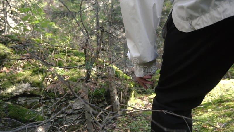 Le fonctionnement de l'athlète sur le terrain rocheux dehors longueur Plan rapproché des jambes des hommes avec des verts Concept photographie stock libre de droits