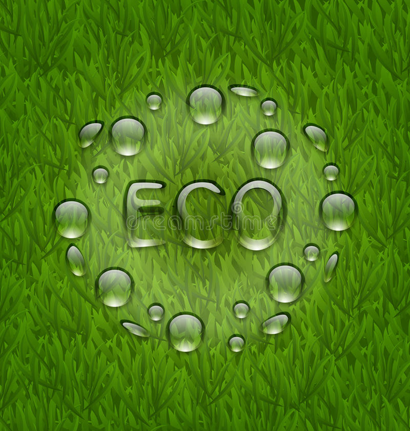 Le fond écologique avec de l'eau chute sur le te frais d'herbe verte illustration de vecteur