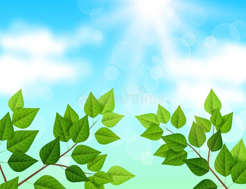 Le fond avec le ciel bleu, branches, vert part illustration libre de droits