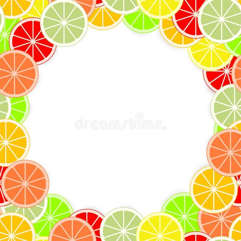 Le fond coloré d'agrume de l'orange juteuse fraîche de coupe, chaux, citron, pamplemousse, mandarine, pamplemousse sonne sur un f illustration stock