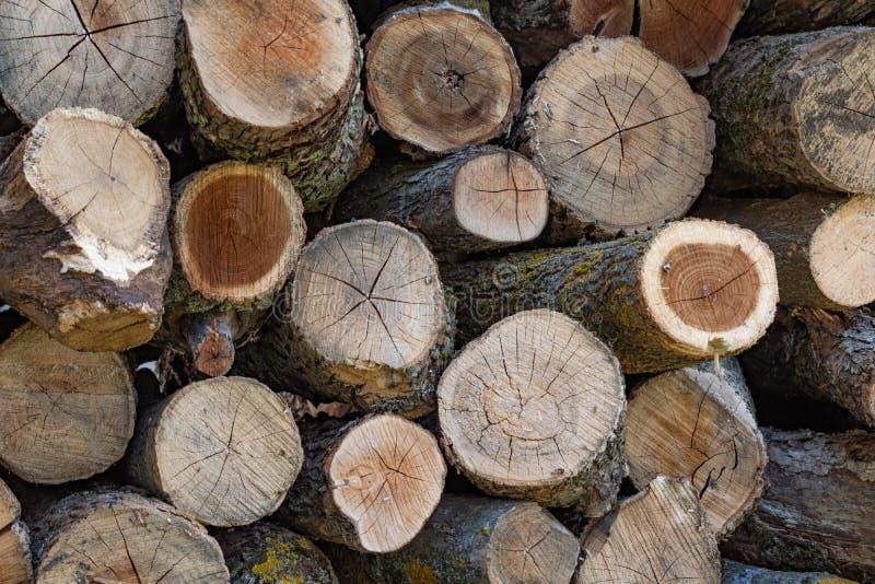 Le fond courant de bois de chauffage de mur de photo du bois de chauffage coup? sec ouvre une session une pile photographie stock libre de droits