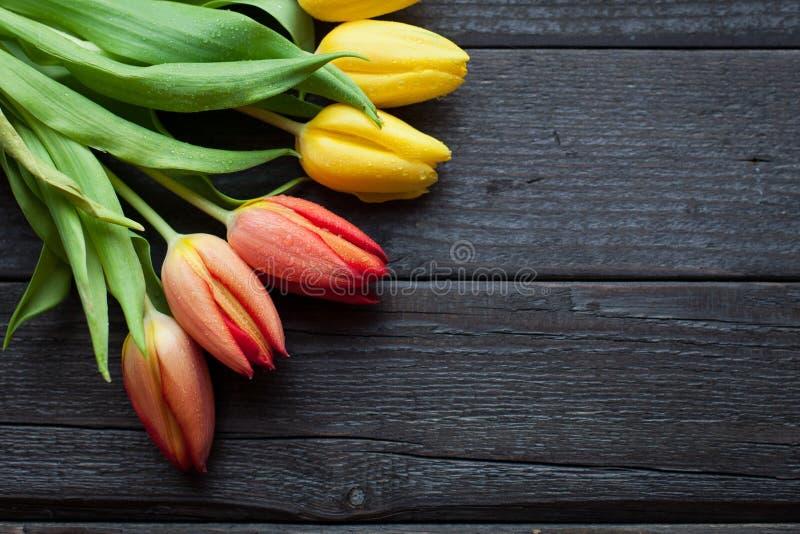 Download Le Fond De Fleur Pour Une Carte Au Jour International Du ` S De Femmes Ou Au Jour De Victoire Sur 9 Peut Tulipes Sur Un Fond En B Image stock - Image du coloré, fleur: 87703769