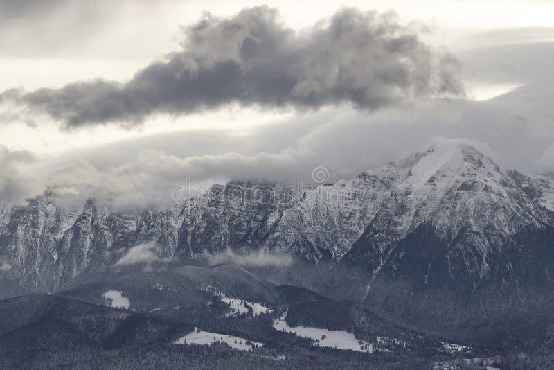 Le fond de Noël et de nouvelle année avec des arbres d'hiver a couvert de neige fraîche dans les montagnes avec le ciel coloré -  photos stock
