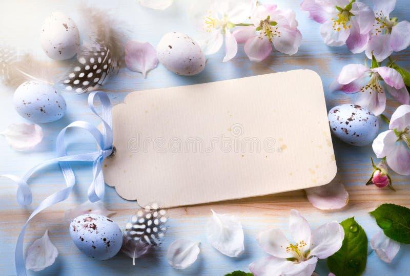 le fond de Pâques avec les oeufs et le ressort de pâques fleurit Vue supérieure photos libres de droits