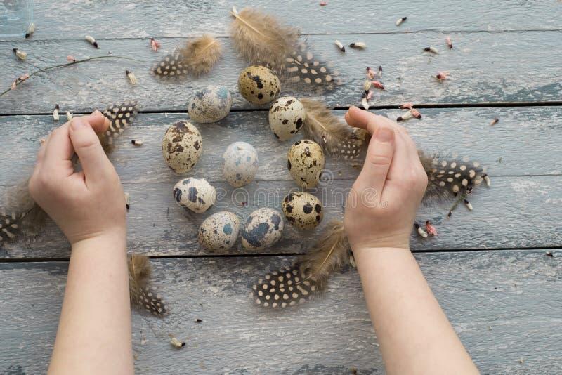 Le fond de Pâques, de petites mains d'enfants tiennent des oeufs de caille photographie stock