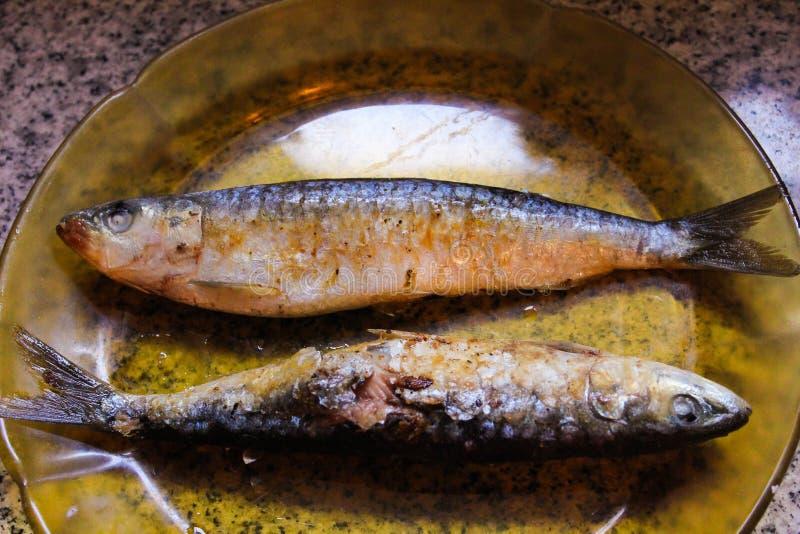 Le fond de sardines rustique mangent le détail image libre de droits