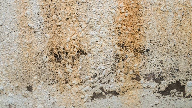 Le fond de texture de mur de ciment photographie stock libre de droits