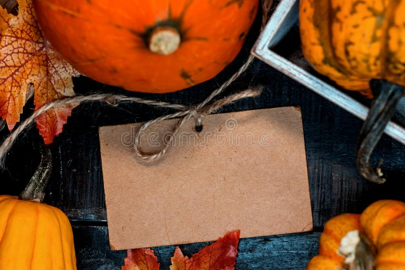 Le fond de thanksgiving avec des fruits et l?gumes sur le bois en automne et l'automne moissonnent la saison photographie stock libre de droits