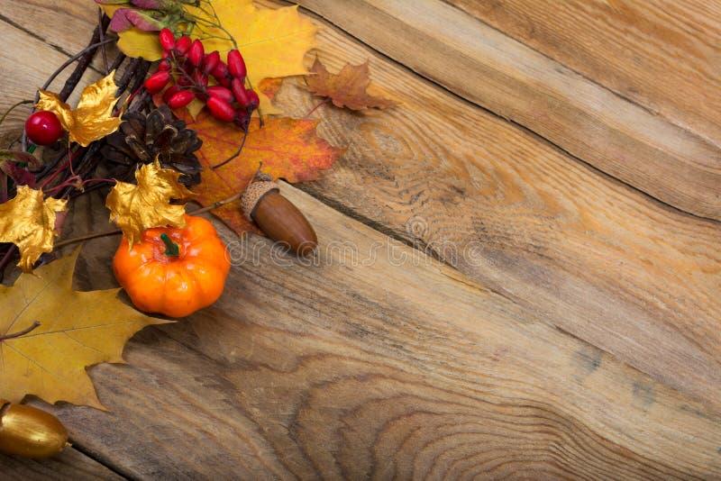 Le fond de thanksgiving avec le potiron et l'érable d'or part du wre image libre de droits