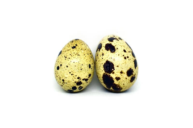 le fond eggs le blanc s?lecteur de cailles d'isolement par orientation images libres de droits